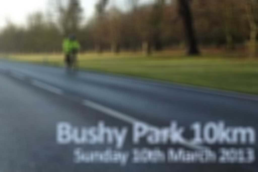 Bushy_Park_10km.jpg blurred out