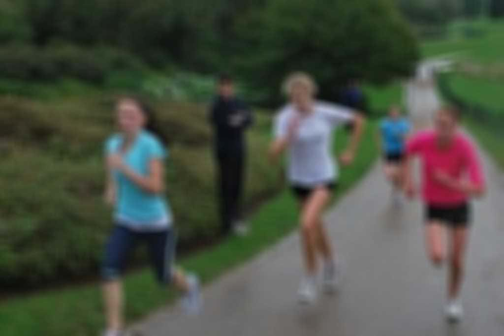 Training_image.jpg blurred out