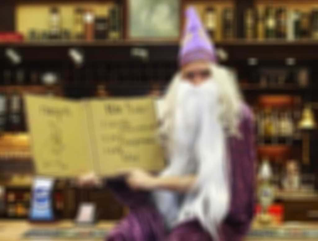 training_wizard.jpg blurred out